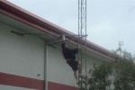 View the album SERC's New Tower & Antenna